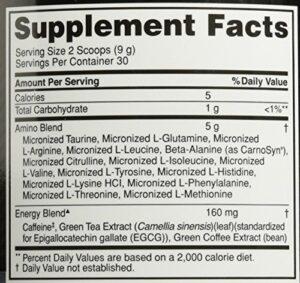 OPTIMUM NUTRITION ESSENTIAL AMINO ENERGY – BLUEBERRY MOJITO